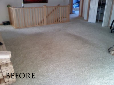 Existing carpet in living room