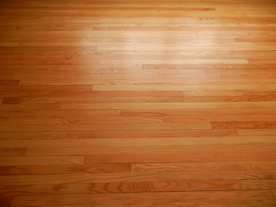 Repaired Red oak Hardwood floor in Iowa City - Mike Stalkfleet Hardwood Floor Refinishing And Installation Iowa